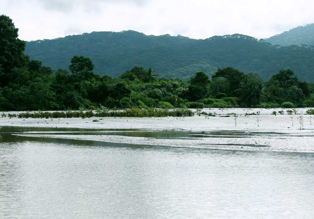Eco Jungle cruises puntarenas boat landscape